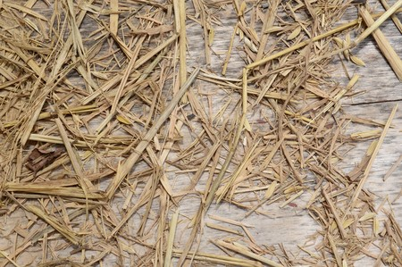 dry straw on wood floor Stock Photo