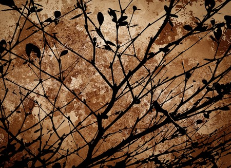 limbs: silhouette branch tree on grunge brown background Stock Photo