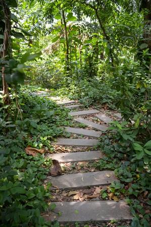 weed block: path way in nature garden thailand Stock Photo