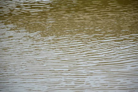 surface: water surface