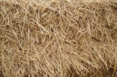 hayrick: dry straw texture