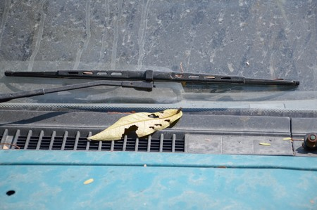 wiper: old windshield wiper