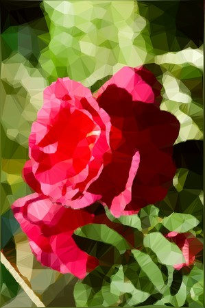 art rose polygon effect