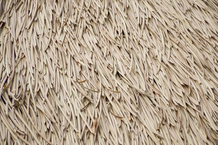 dry Nypa fruticans leaves roof Stock Photo