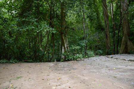 chantathen forest in Bang Phra, Sriracha, Chonburi, Thailand