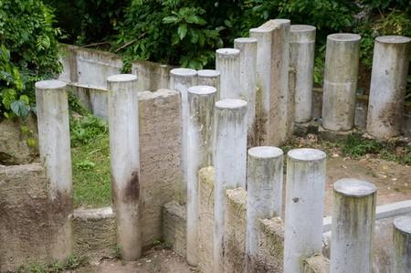 cement pole in nature garden