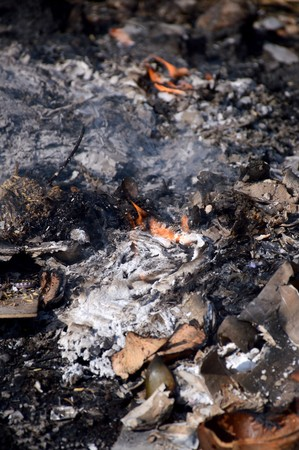 Burned charcoal and ash from fire