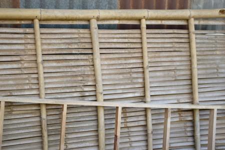 bamboo wood in midden Stok Fotoğraf