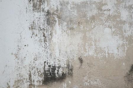 la texture vieux mur de ciment