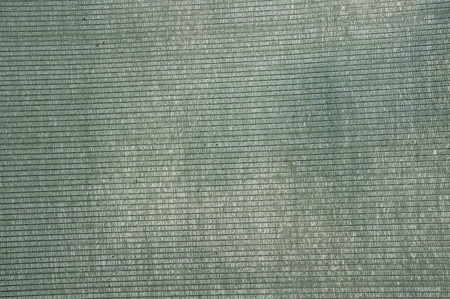 green shading net background Stock Photo