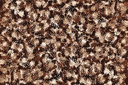 Kunst grunge bruin abstracte patroon illustratie achtergrond Stockfoto - 71978588