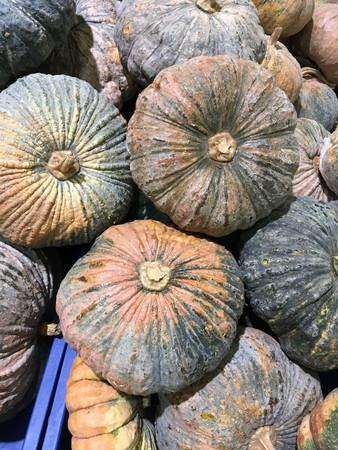 pumpkin fruit in market