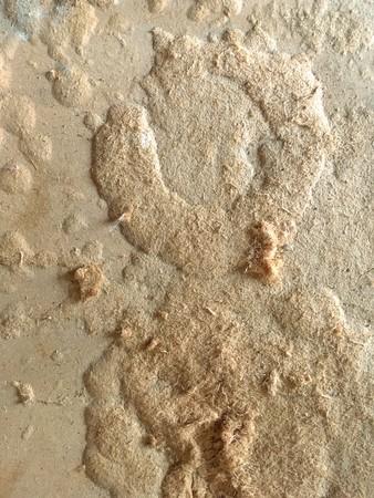 old pressed paper texture Фото со стока