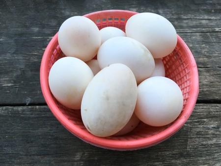 egg duck on wood floor Stock Photo