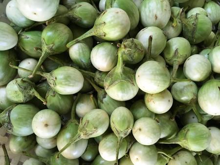 fresh green eggplant Reklamní fotografie