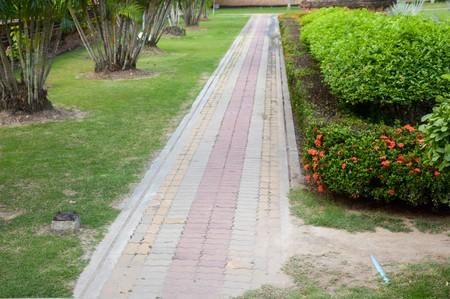 walkway in nature garden