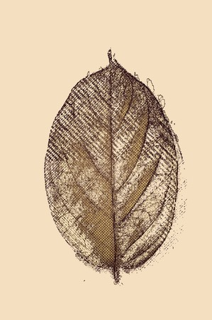 art leaves on brown background