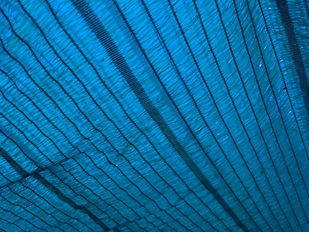 blue shading net texture