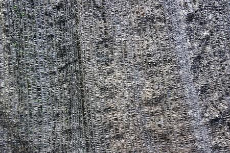 close up dry net texture