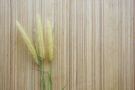 grass flower on wood floor texture