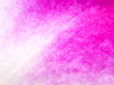 art pink color bokeh abstract pattern illustration background