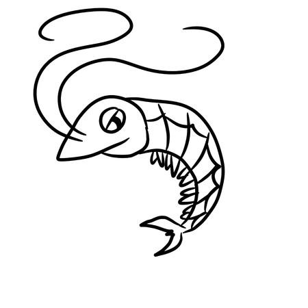 cute shrimp cartoon - kid drawing