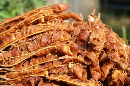 close up dry tamarind for cooking