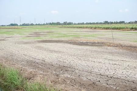 Suelo seco de grietas en tierras agrícolas en Tailandia