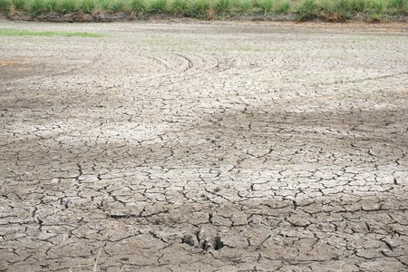 dry cracked soil texture in agriculture field at country Thailand Reklamní fotografie