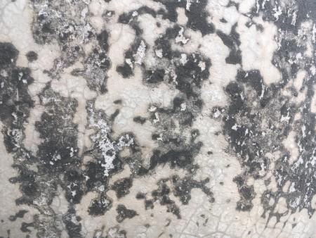 old cement building floor texture