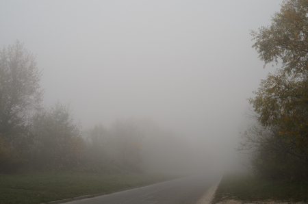 Road in the fog in autumn