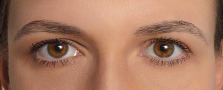 Symmetrical womens eyes . Symmetric macro mirrored two deep human eyes. Closeup brown eyes of European person. Banco de Imagens