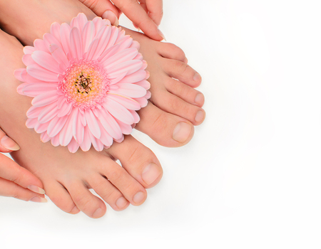 Woman pure clean feet without pedicure and gerbera flower in corner aspect isolated on white. Not polished blank natural nails. Healthy neet skin. Stok Fotoğraf