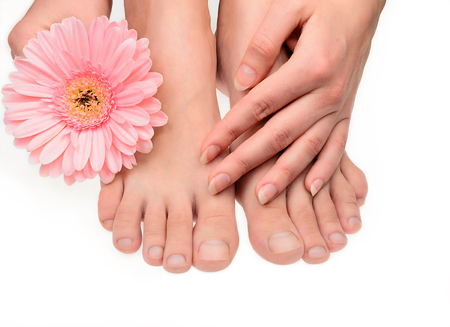 Woman pure clean hand and feet without manicure and gerbera flower isolated on white. Not polished blank natural nails. Healthy neet skin.