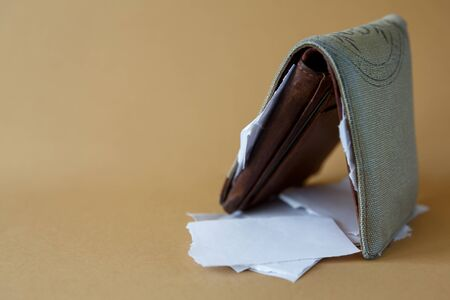 Side view of an empty wallet with pieces of paper instead of money on a light monophonic background. Bankruptcy and currency devaluation, depreciation of money 免版税图像