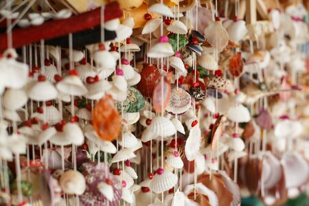 Garland or curtain of seashells on a shop window. Home interior design and decor Imagens