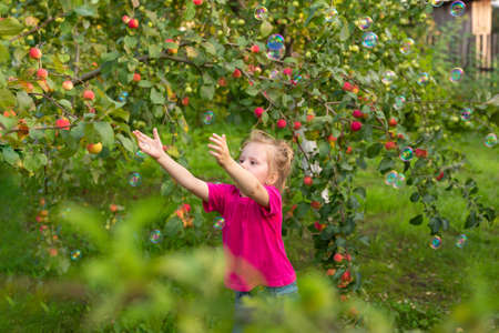 Portrait of children in apple orchard. Little girl in pink Tshirt, stands near branches of an apple tree, catching soap bubbles with her hands. Carefree childhood, happy child