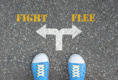 flee: One standing at the crossroad choosing what to do next  fight or flee