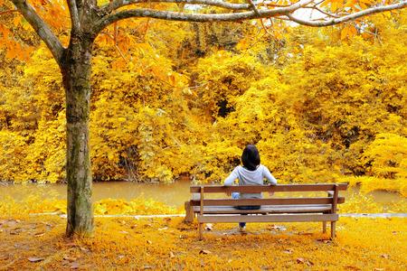 秋に黄色の葉のツリーを見てベンチに座っている女性。感じ自由かつ簡単です。