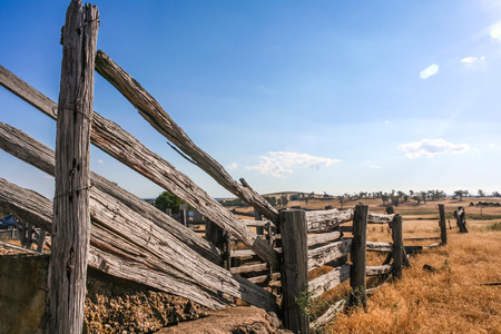 cattle wire: Old dilapidated wooden cattle race fence in the country