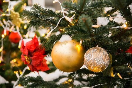 Christmas Golden Christmas tree toys balls and red flower on Christmas tree branch close up on blurred background, winter Banco de Imagens