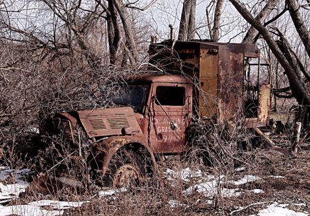 나무로 자란 골동품 배달 트럭