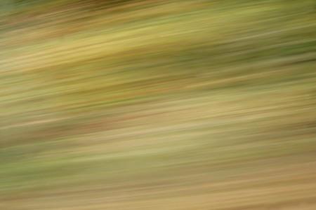 背景や壁紙のテクスチャの緑と黄色の色でカラフルな秋ぼかし 写真素材