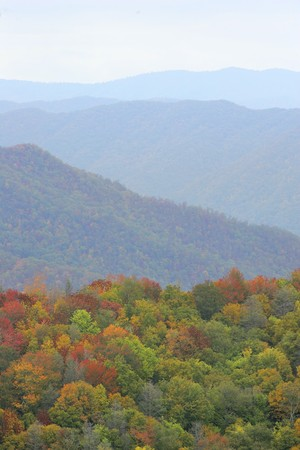 colorful fall photos from the Great Smoky Mountains National Park with orange, green and yellow Stock Photo