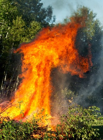 wildfire: large brush pile with a huge roaring fire engulfing the trees Stock Photo
