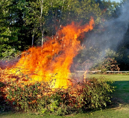 large brush pile with a huge roaring fire engulfing the trees Stock Photo - 7749753