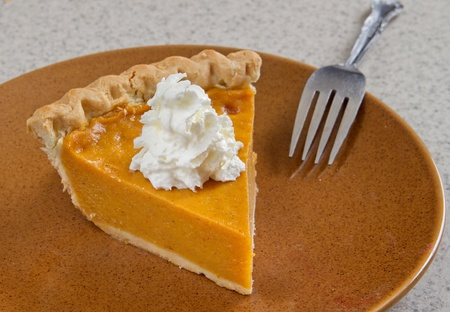 one slice of homemade pumpkin pie with whipped cream photo