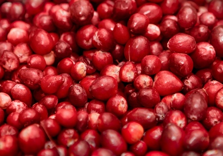 closeup macro of red berries in a big pile Stock Photo - 12749946