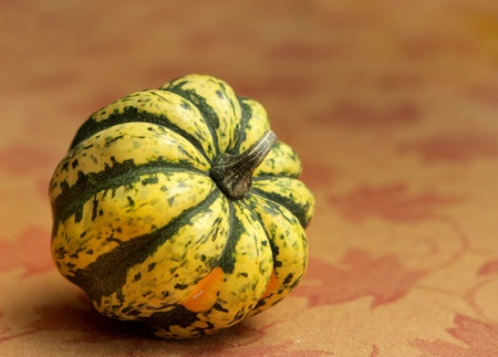 tiger striped pumpkin on a fall leaf background Banque d'images