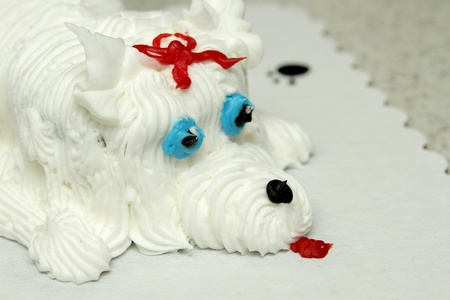 closeup of the face of a birthday cake in the shape of a dog